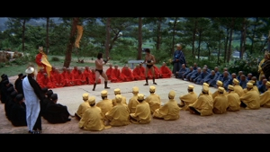 """Godfrey Ho saw this and must've had a revelation. """"I know! Multi-colored ninjas! Brilliant!"""""""